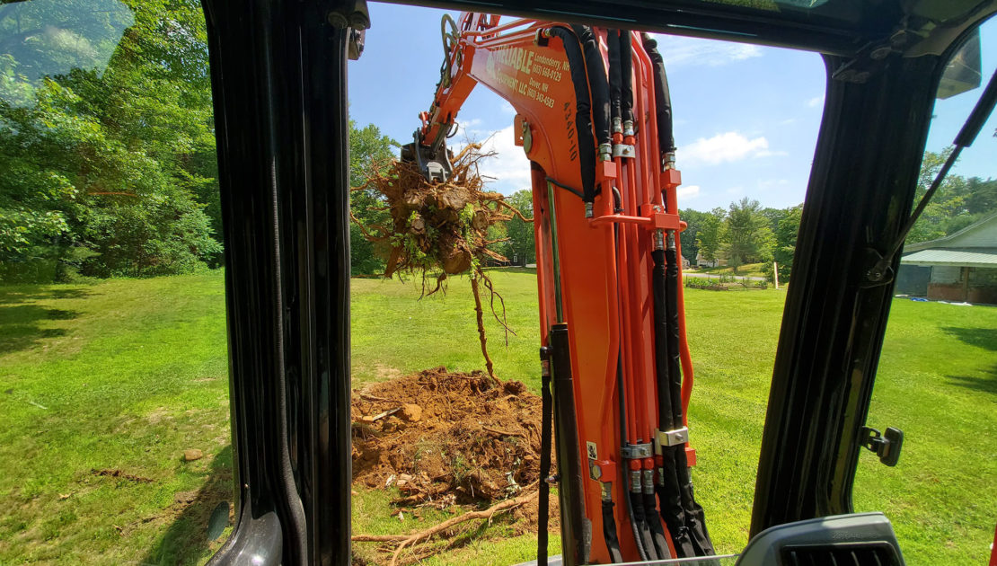 Rochester, NH (Stump Removal)